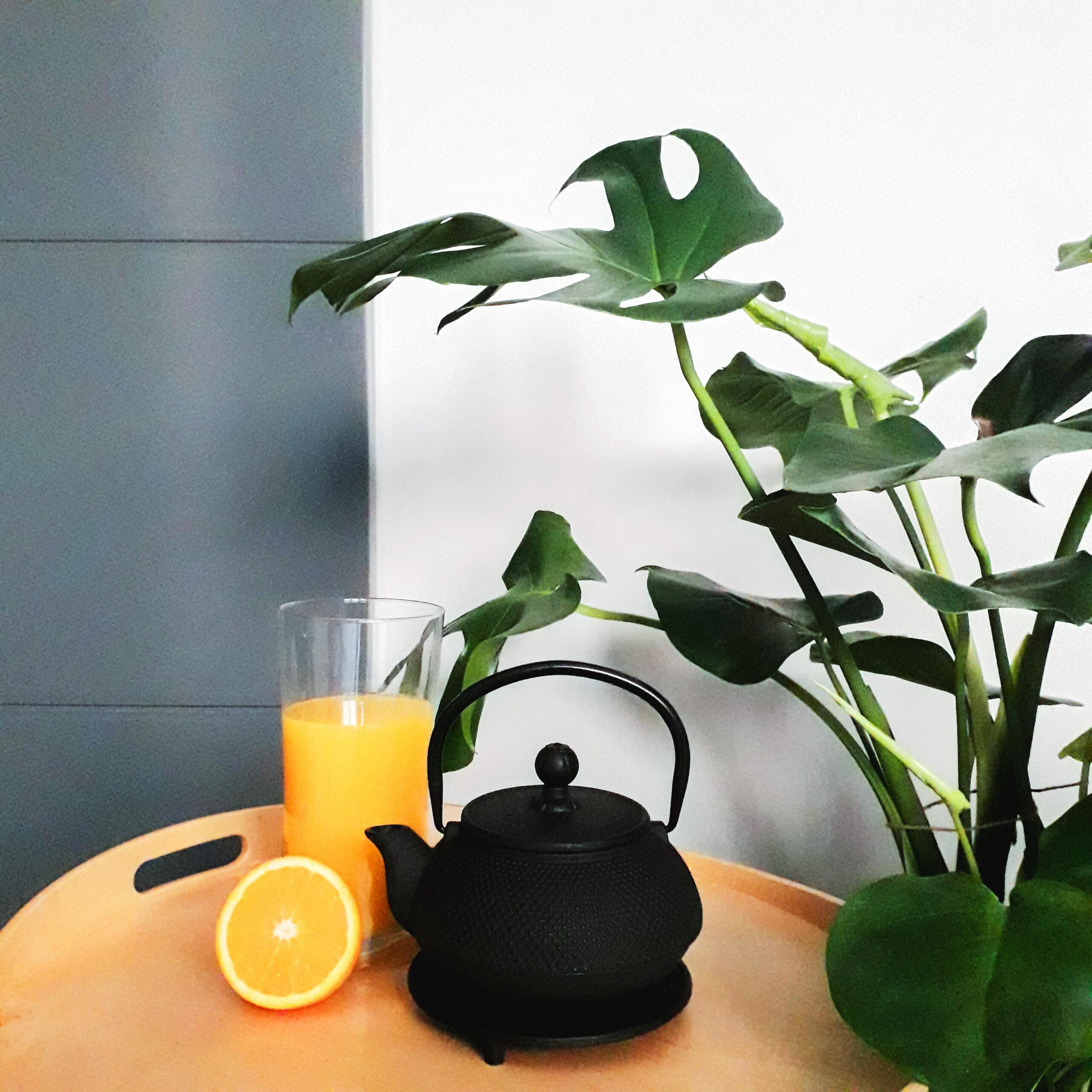 casa saludable - elementos naturales